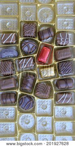 Various Chocolate Bonbons, Top View