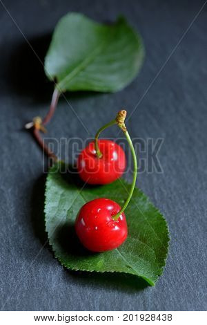 Sweet cherries and leaf on ardesia plate