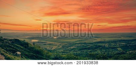 Beautiful landscape panorama with green fields and setting sun, meadows, lakes and white horse grazing. Moldova, Bahmut.