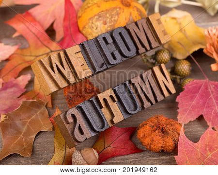 Wood letters spelling welcome autumn with a fall decorative background