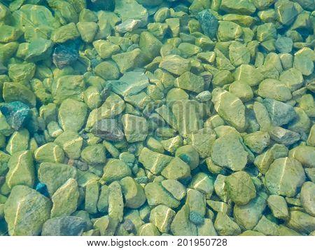 Duckweed In Between Stones At The Waters Edge