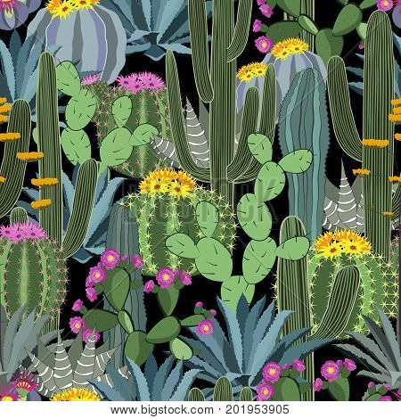 Seamless pattern with cactus. Wild cactus forest vector