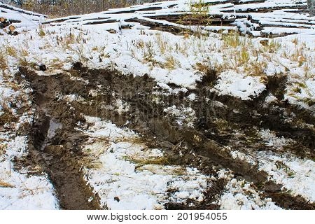 Tracks From A Truck That Was Stuck In The Muskeg