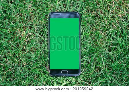 smartphone with green screen for key chroma screen. on Green grass background smartphone with