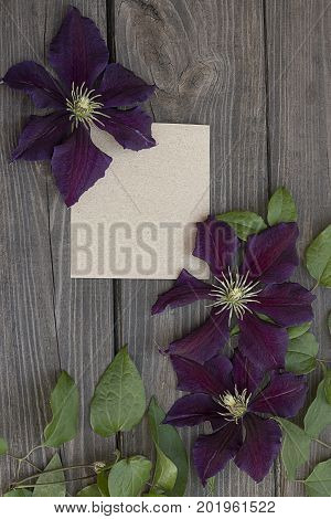 Purple clematis flowers and old paper on wooden background.