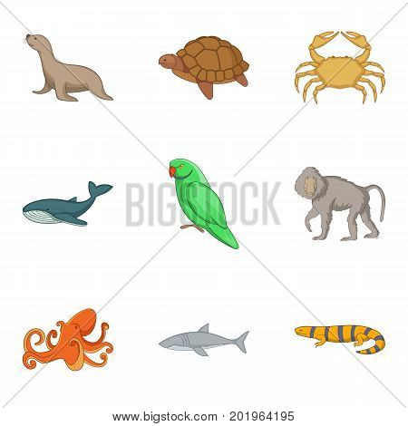 Water inhabitant icons set. Cartoon set of 9 water inhabitant vector icons for web isolated on white background