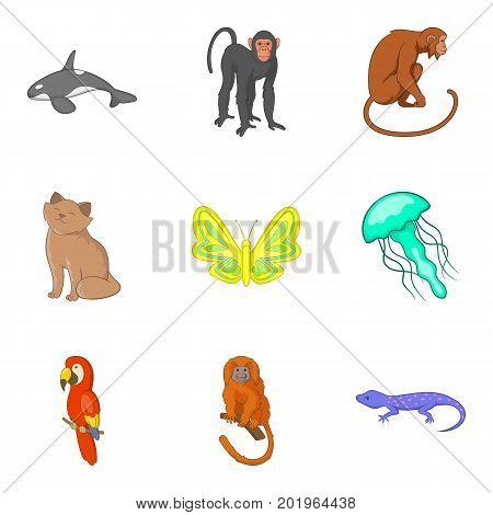 Good animal icons set. Cartoon set of 9 good animal vector icons for web isolated on white background