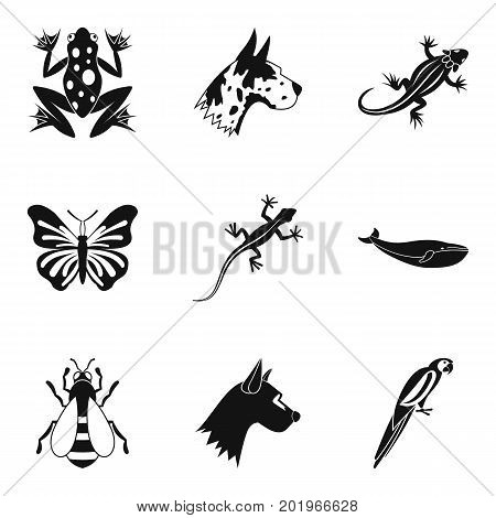 Bug icons set. Simple set of 9 bug vector icons for web isolated on white background