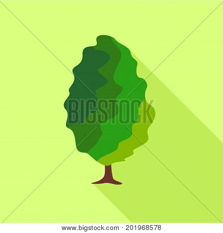 Deciduous tree icon. Flat illustration of deciduous tree vector icon for web