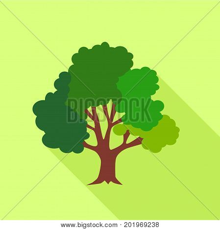 Big fluffy tree icon. Flat illustration of big fluffy tree vector icon for web