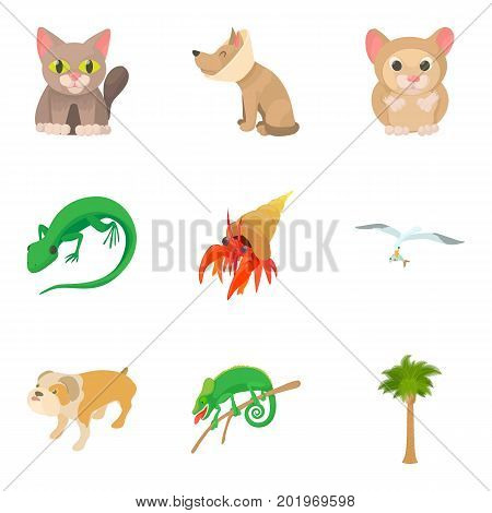 Small animal icons set. Cartoon set of 9 small animal vector icons for web isolated on white background