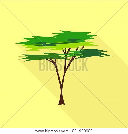 Savanna tree icon. Flat illustration of savanna tree vector icon for web