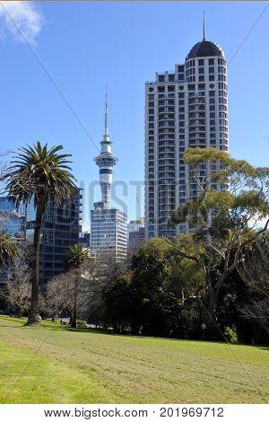 Auckland City Downtown Buildings Skyline