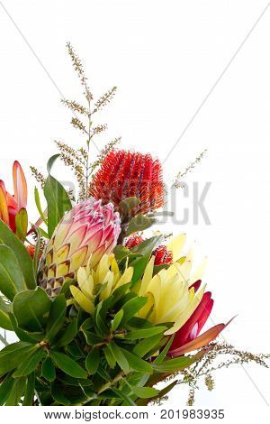 Bunch Of Native Australian Flowers - With Protea And Banksia