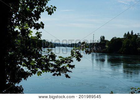 Rhine View From Rheinfelden Switzerland In Summer Far View