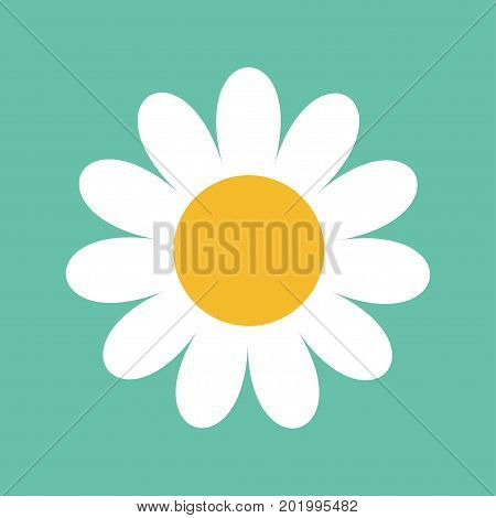 White daisy chamomile. Cute big flower plant collection. Love card. Camomile icon Growing concept. Flat design. Green background. Isolated. Vector illustration