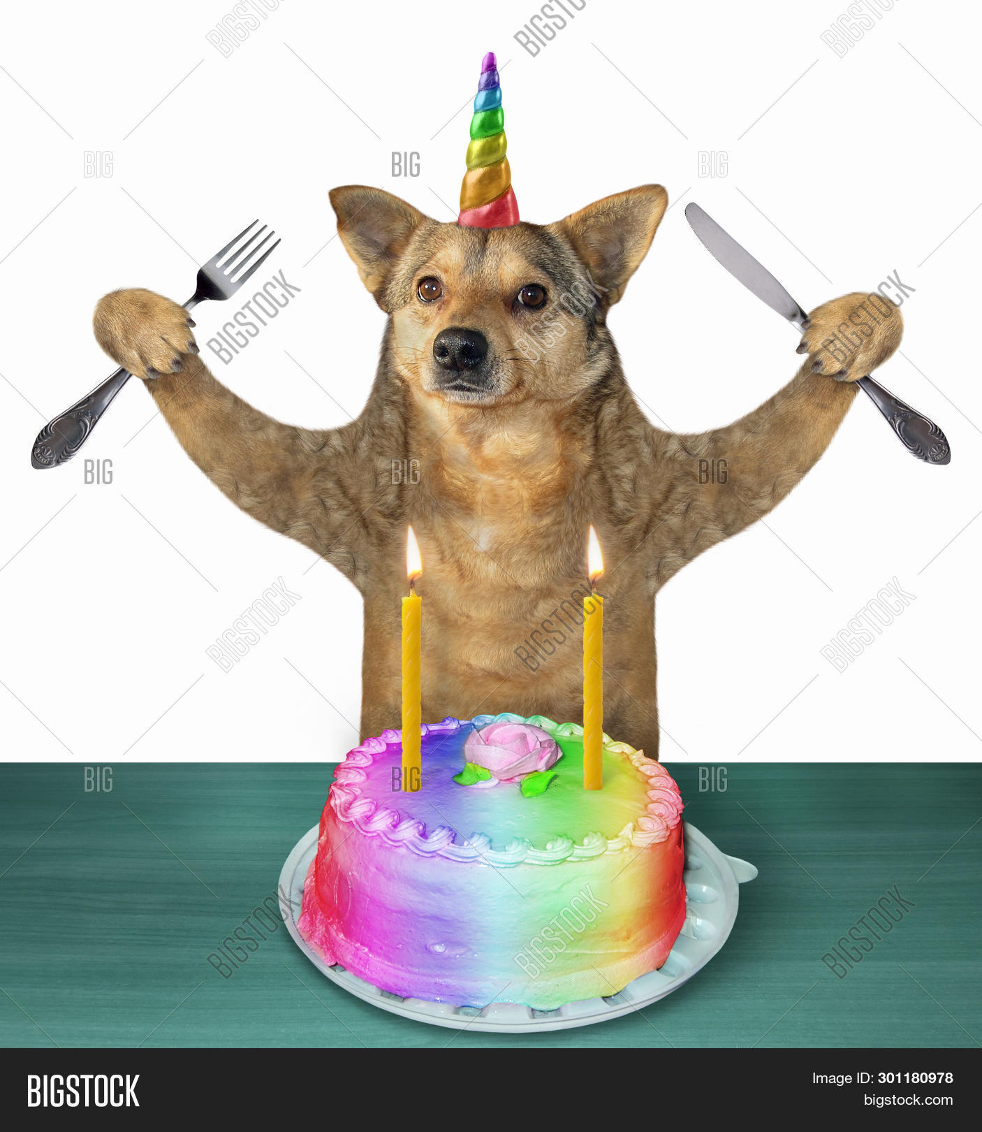 Super Dog Unicorn Knife Fork Image Photo Free Trial Bigstock Personalised Birthday Cards Bromeletsinfo
