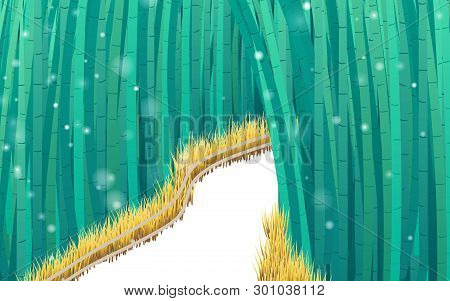 Bamboo Forest And Walkway With Snowfall In Winter