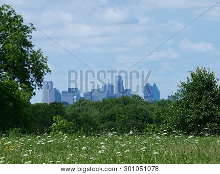 Skyline Framed By High Meadow  Wildflowers Through Rising Humidity Levels