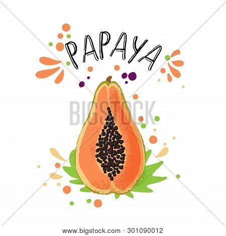 Vector Hand Draw Colored Papaya Illustration. Orange, Yellow Papaya With Pulp And Fruit Bones And Gr