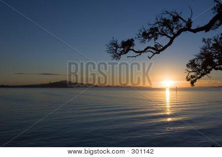 Rangitoto Sonnenaufgang