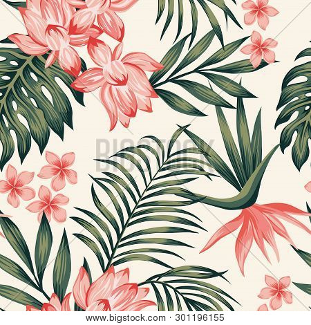 Summer Exotic Green Tropical Palm, Monstera Leaves And Pink Lily, Frangipani, Plumeria, Bird Of Para