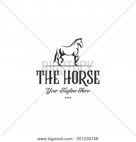 Minimalist And Luxury Horse Logo. Stable, Farm,valley,company, Race Logo Design
