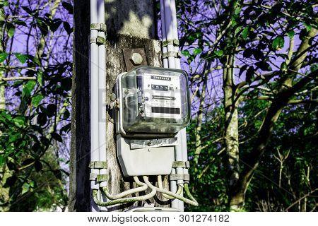 Electricity Meter Reading With Green Leaves Background, Meter Measuring Instrument, Watt-hour Meter