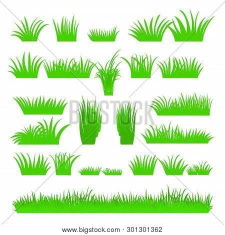 Vector Flat Abstract Green Grass Set Isolated On White Background. Spring Big Fresh Grass Kit. Tufts
