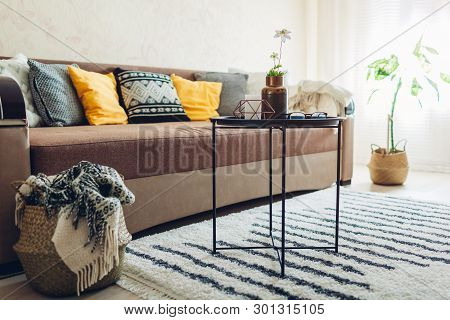 Flat Interior Of Living Room Decorated With Baskets, Plants And Carpet. Couch With Cushions And Tabl
