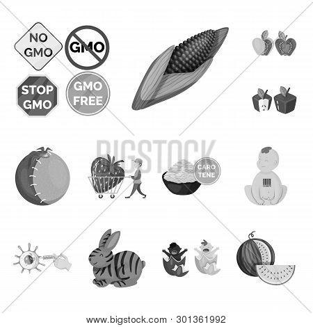 Vector Illustration Of Transgenic And Organic Sign. Set Of Transgenic And Synthetic Vector Icon For