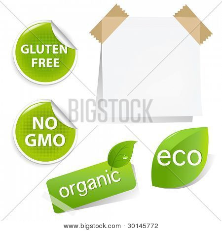 Eco Labels Set, Isolated On White Background