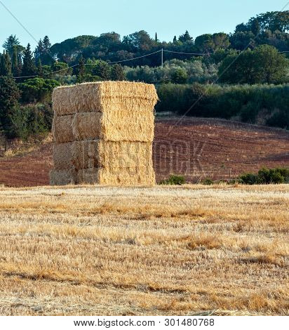 Beautiful Morning Summer Country Landscape. Field With Haystack On Hill Slope.