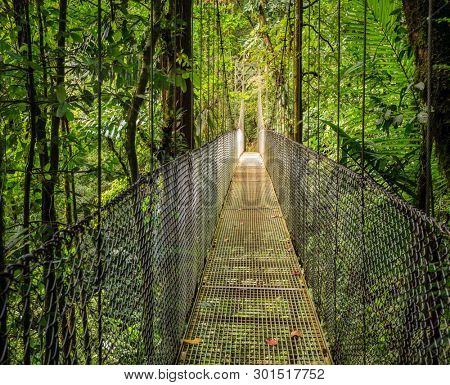 One of 6 hanging bridges in Arenal Hanging Bridges Park in Costa Rica
