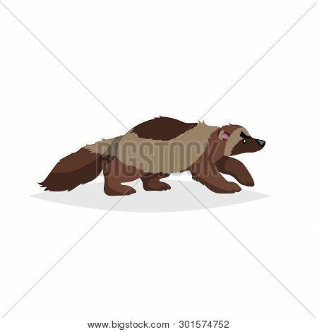 Cute Wolverine. Cartoon Comic Style Vector Illustration Of Forest Wild Animal. Predator, Dangerous A