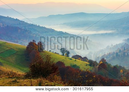 Rural Landscape On A Foggy Autumn Dawn In Mountains. Trees On A Grassy Slope. Village Down In The Va