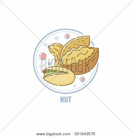 Icon Of Nuts Mix Group In Circle Flat Linear Style