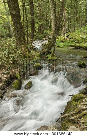 Idyllic Landscape In Hotaka Mountain Range, Kamikochi National Park, Kamikochi, Japan