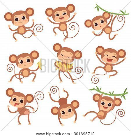 Baby Monkey. Wild Cartoon Animals Playing And Eating Banana Vector Characters Of Monkeys. Monkey And