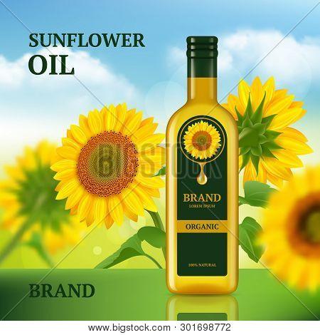 Sunflower Oil. Advertizing Design Template For Magazine Chef Liquid Product In Bottle Vector Backgro