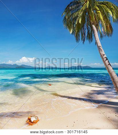 Tropical beach with coconut palms, Whai island, Thailand
