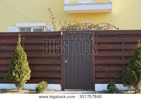 Brown Metal Door And Wooden Fence Of Planks Outside With Green Coniferous Fir