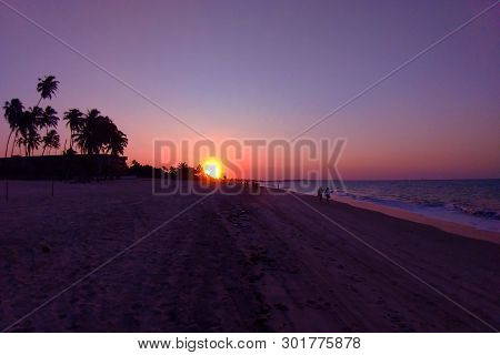 Sunset On The Beach With Purple Sky, Trees And Sea.