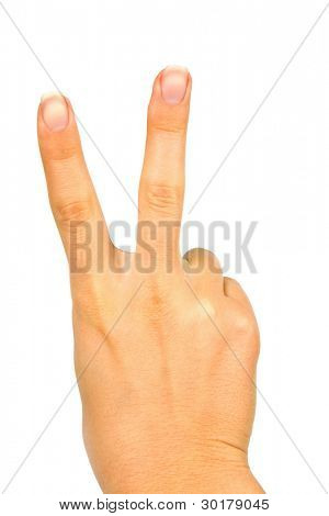 isolated hand on a white background