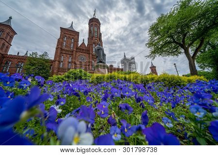 Washington, Dc - May 11, 2019: Exterior View Of The Smithsonian Castle, With Purple Pansies Flowers