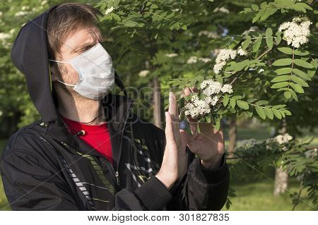 Man Wearing A Medical Mask Shows Stop Gesture To A Flowering Branches. Seasonal Allergic Reaction To