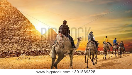 Camel Caravan And The Pyramids Of Giza In Egypt