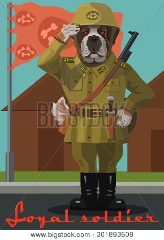 Soldier Dog Saint Bernard, Standing Guard, He Paw Salutes When The Flag Is Raised, He Is A Loyal And
