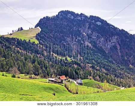 The Forested Alpine Peak Of The  Gersauerstock Or Vitznauerstock Peak On Rigi Mountain - Cantons Of