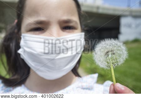 Allergic 6 Year Old Little Girl Holds A Dandelion. She Is Wearing A Face Mask